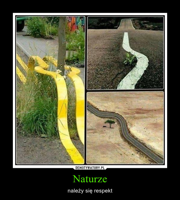 Naturze – należy się respekt