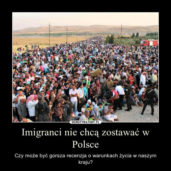 Imigranci nie chcą zostawać w Polsce – Czy może być gorsza recenzja o warunkach życia w naszym kraju?