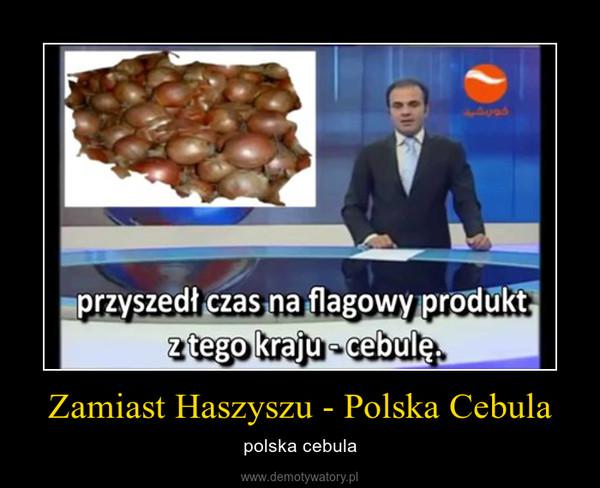 Zamiast Haszyszu - Polska Cebula – polska cebula