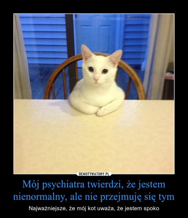 Mój psychiatra twierdzi, że jestem nienormalny, ale nie przejmuję się tym – Najważniejsze, że mój kot uważa, że jestem spoko
