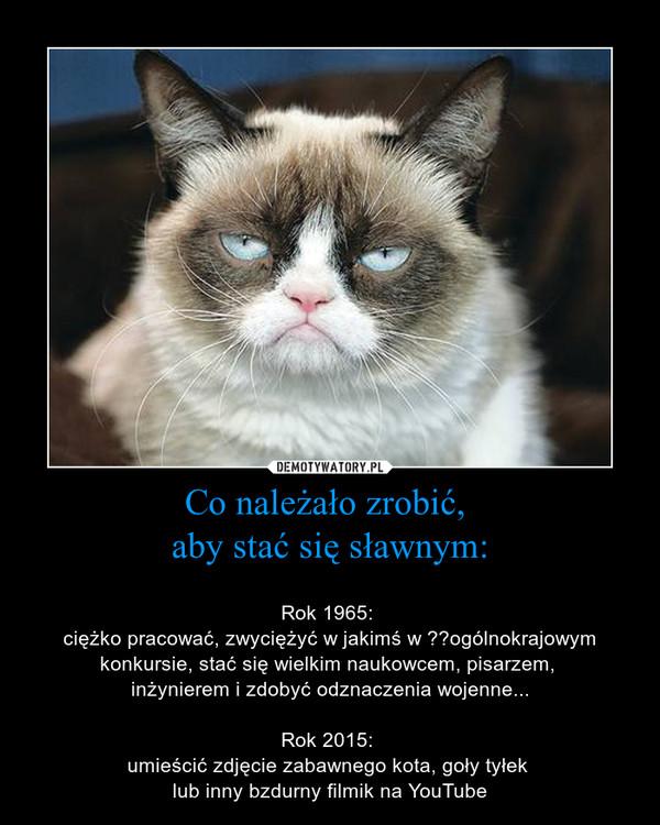 Co należało zrobić, aby stać się sławnym: – Rok 1965: ciężko pracować, zwyciężyć w jakimś w ogólnokrajowym konkursie, stać się wielkim naukowcem, pisarzem, inżynierem i zdobyć odznaczenia wojenne...Rok 2015: umieścić zdjęcie zabawnego kota, goły tyłek lub inny bzdurny filmik na YouTube