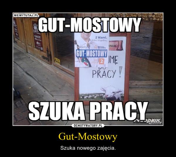 Gut-Mostowy – Szuka nowego zajęcia.