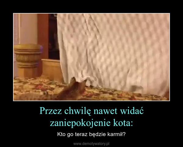 Przez chwilę nawet widać zaniepokojenie kota: – Kto go teraz będzie karmił?