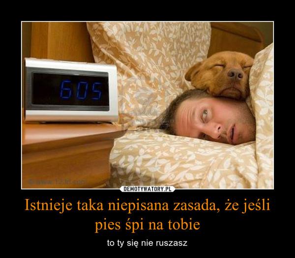 Istnieje taka niepisana zasada, że jeśli pies śpi na tobie – to ty się nie ruszasz