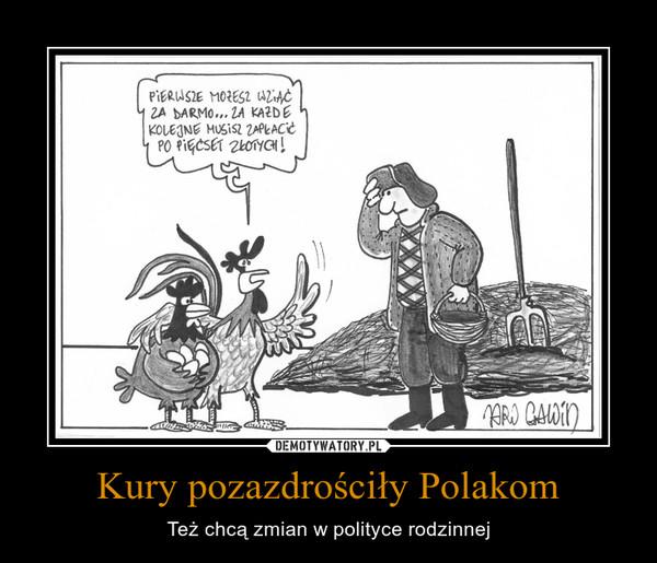 Kury pozazdrościły Polakom – Też chcą zmian w polityce rodzinnej