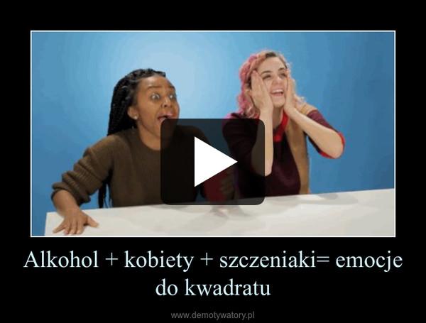 Alkohol + kobiety + szczeniaki= emocje do kwadratu –