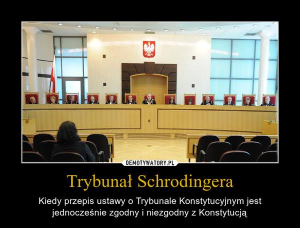 Trybunał Schrodingera – Kiedy przepis ustawy o Trybunale Konstytucyjnym jest jednocześnie zgodny i niezgodny z Konstytucją