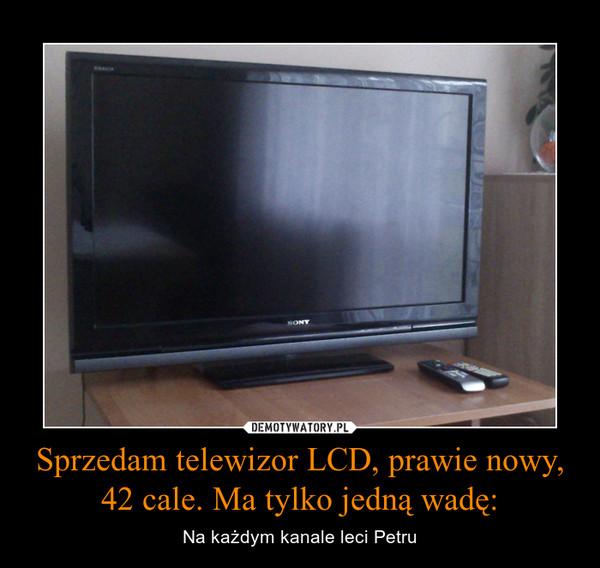 Sprzedam telewizor LCD, prawie nowy, 42 cale. Ma tylko jedną wadę: – Na każdym kanale leci Petru