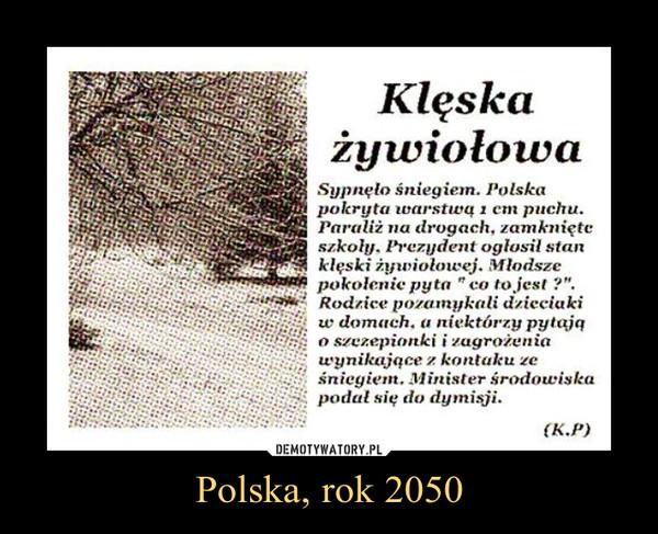 Polska, rok 2050 –