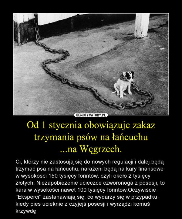 Od 1 stycznia obowiązuje zakaz trzymania psów na łańcuchu...na Węgrzech. – Ci, którzy nie zastosują się do nowych regulacji i dalej będą trzymać psa na łańcuchu, narażeni będą na kary finansowe w wysokości 150 tysięcy forintów, czyli około 2 tysięcy złotych. Niezapobieżenie ucieczce czworonoga z posesji, to kara w wysokości nawet 100 tysięcy forintów.Oczywiście ''Eksperci'' zastanawiają się, co wydarzy się w przypadku, kiedy pies ucieknie z czyjejś posesji i wyrządzi komuś krzywdę
