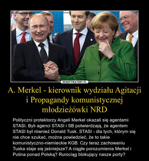 A. Merkel - kierownik wydziału Agitacji i Propagandy komunistycznej młodzieżówki NRD