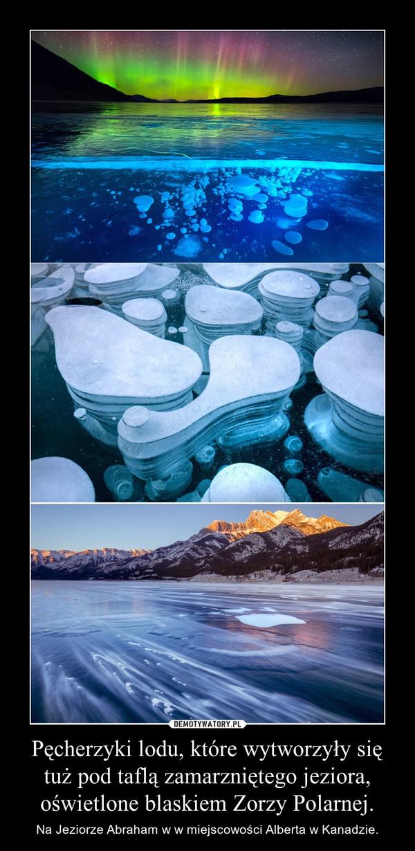 Pęcherzyki lodu, które wytworzyły się tuż pod taflą zamarzniętego jeziora, oświetlone blaskiem Zorzy Polarnej. – Na Jeziorze Abraham w w miejscowości Alberta w Kanadzie.