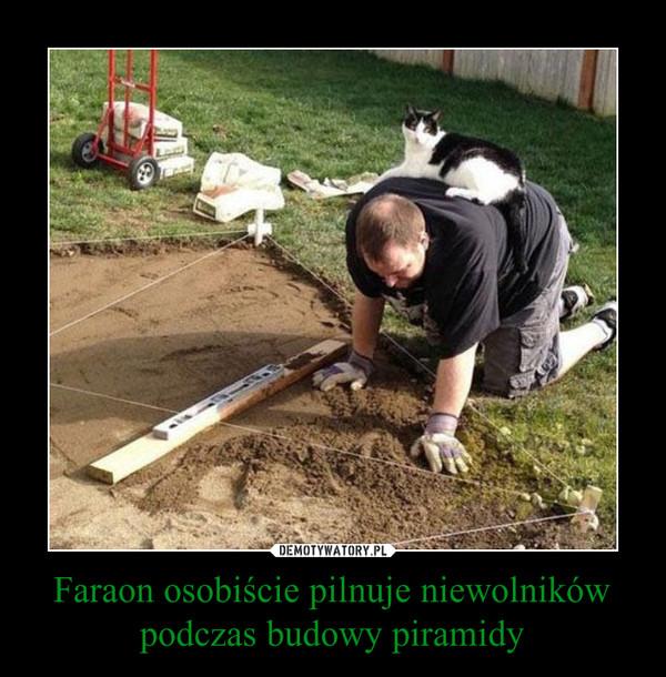 Faraon osobiście pilnuje niewolników podczas budowy piramidy –