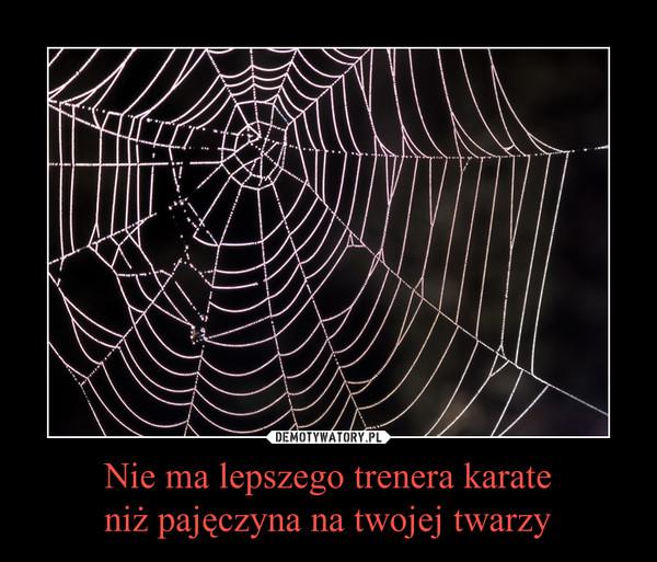 Nie ma lepszego trenera karateniż pajęczyna na twojej twarzy –
