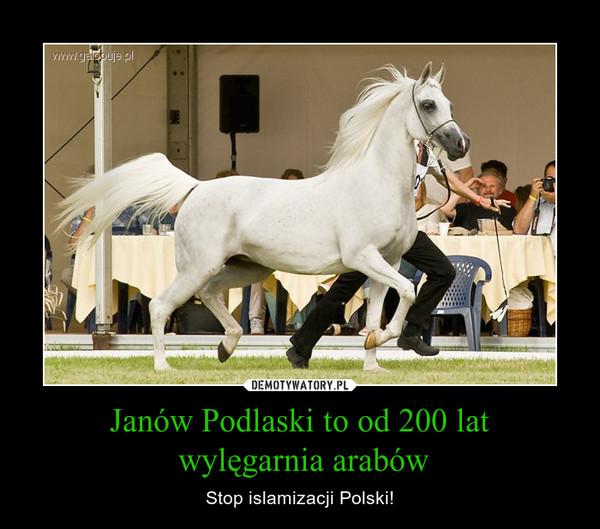 Janów Podlaski to od 200 lat wylęgarnia arabów – Stop islamizacji Polski!