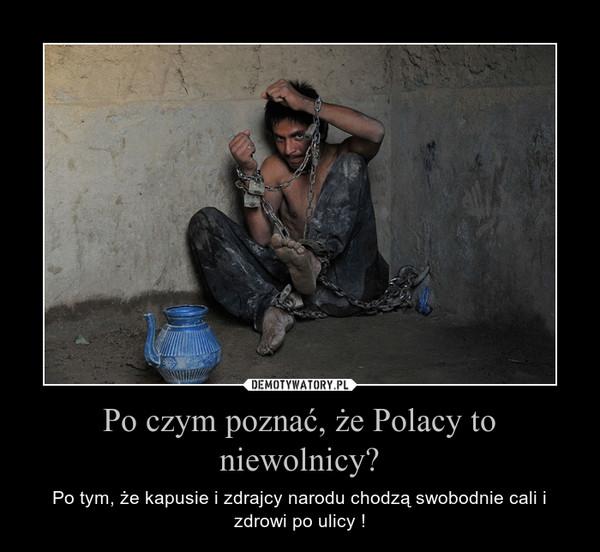 Po czym poznać, że Polacy to niewolnicy? – Po tym, że kapusie i zdrajcy narodu chodzą swobodnie cali i zdrowi po ulicy !