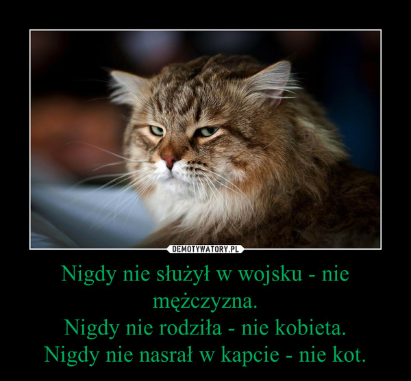 Nigdy nie służył w wojsku - nie mężczyzna.Nigdy nie rodziła - nie kobieta.Nigdy nie nasrał w kapcie - nie kot. –