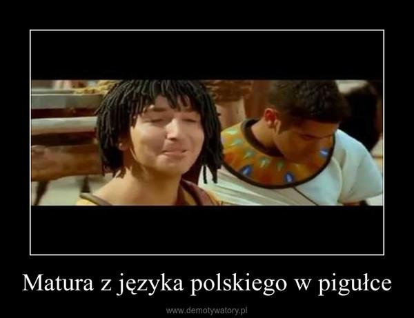 Matura z języka polskiego w pigułce –