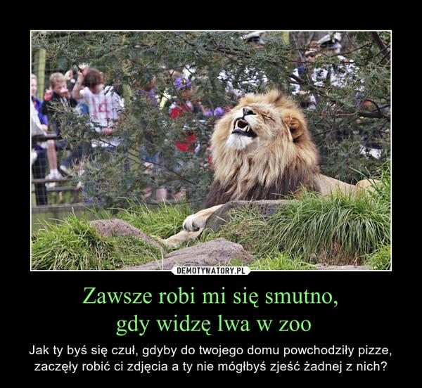 Zawsze robi mi się smutno, gdy widzę lwa w zoo – Jak ty byś się czuł, gdyby do twojego domu powchodziły pizze, zaczęły robić ci zdjęcia a ty nie mógłbyś zjeść żadnej z nich?