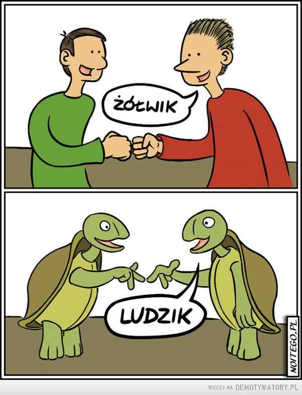 Ludzik –