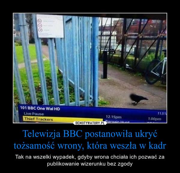 Telewizja BBC postanowiła ukryć tożsamość wrony, która weszła w kadr – Tak na wszelki wypadek, gdyby wrona chciała ich pozwać za publikowanie wizerunku bez zgody