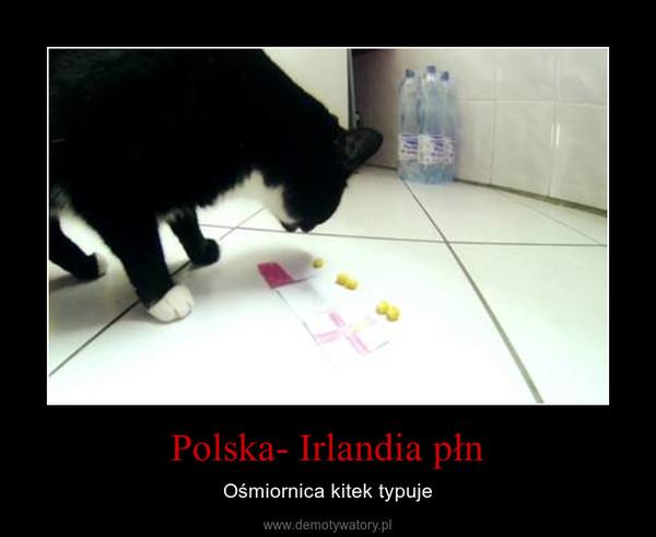 Polska- Irlandia płn – Ośmiornica kitek typuje
