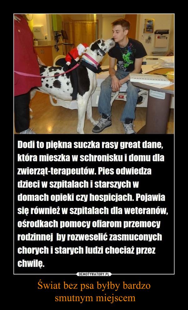 Świat bez psa byłby bardzo smutnym miejscem –  Dodi to piękna suczka rasy great dane,która mieszka w schronisku i domu dlazwierząt-terapeutów. Pies odwiedzadzieci w szpitalach i starszych wdomach opieki czy hospicjach. Pojawiasię również w szpitalach ula weteranów.ośrodkach pomocy ofiarom przemocyrodzinnej mi rozweselić zasmuconychchorych i starych ludzi chociaż przezchwilę.