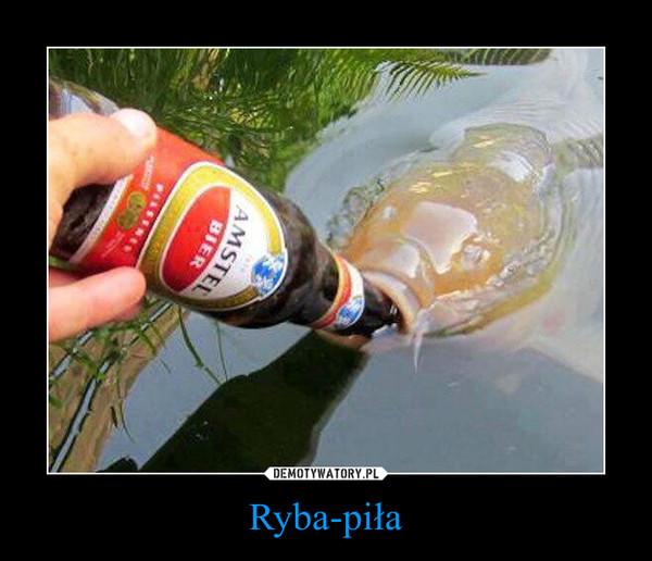 Ryba-piła –