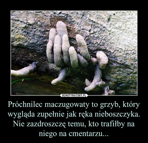 Próchnilec maczugowaty to grzyb, który wygląda zupełnie jak ręka nieboszczyka.Nie zazdroszczę temu, kto trafiłby na niego na cmentarzu... –