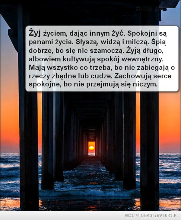Żyj życiem.... –