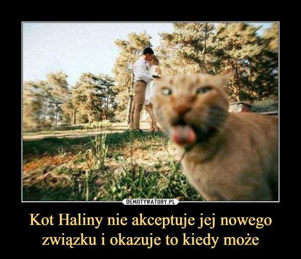 Kot Haliny nie akceptuje jej nowego związku i okazuje to kiedy może –