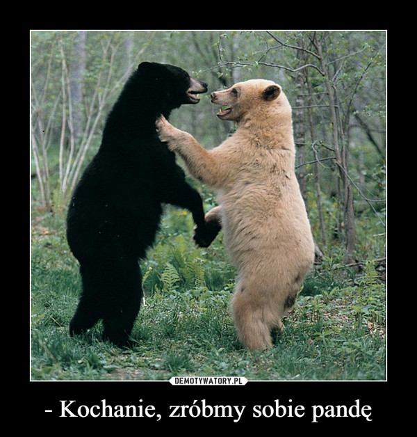 - Kochanie, zróbmy sobie pandę –