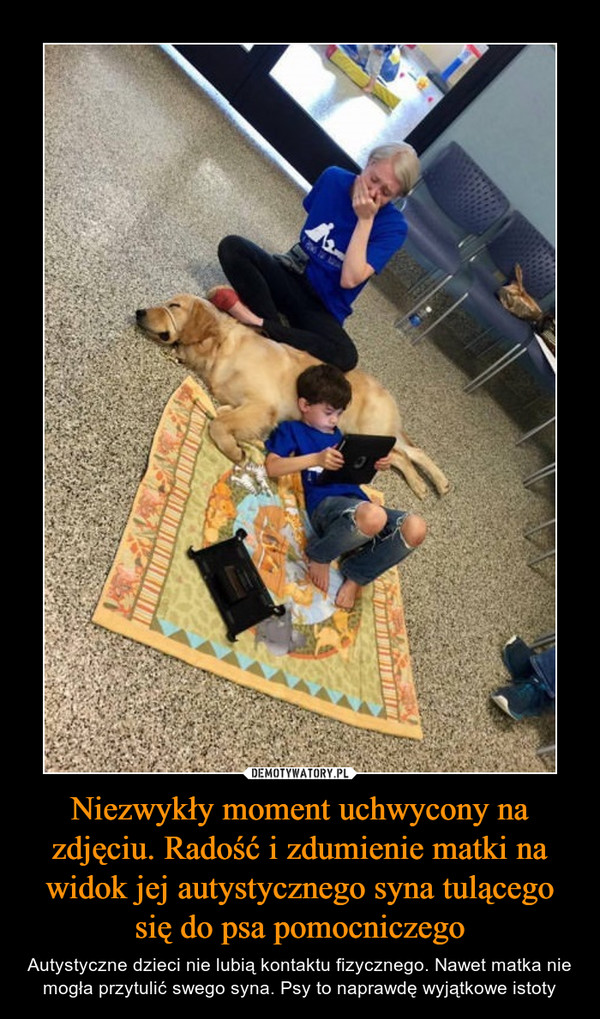 Niezwykły moment uchwycony na zdjęciu. Radość i zdumienie matki na widok jej autystycznego syna tulącego się do psa pomocniczego – Autystyczne dzieci nie lubią kontaktu fizycznego. Nawet matka nie mogła przytulić swego syna. Psy to naprawdę wyjątkowe istoty