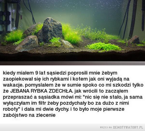 Akwarium –