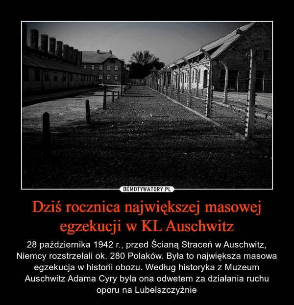 Dziś rocznica największej masowej egzekucji w KL Auschwitz – 28 października 1942 r., przed Ścianą Straceń w Auschwitz, Niemcy rozstrzelali ok. 280 Polaków. Była to największa masowa egzekucja w historii obozu. Według historyka z Muzeum Auschwitz Adama Cyry była ona odwetem za działania ruchu oporu na Lubelszczyźnie
