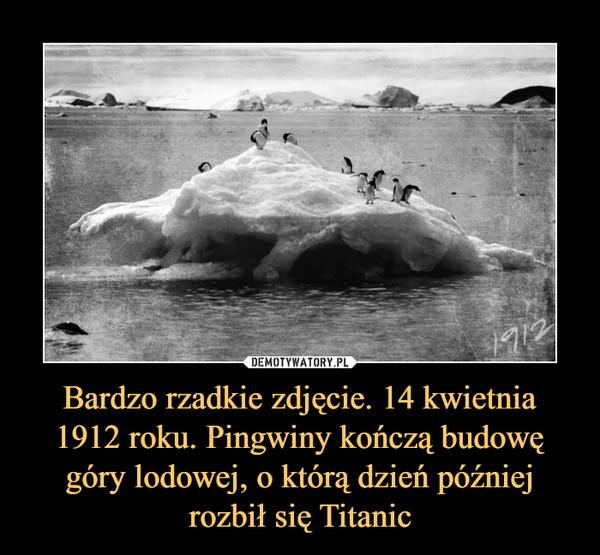 Bardzo rzadkie zdjęcie. 14 kwietnia 1912 roku. Pingwiny kończą budowę góry lodowej, o którą dzień później rozbił się Titanic –