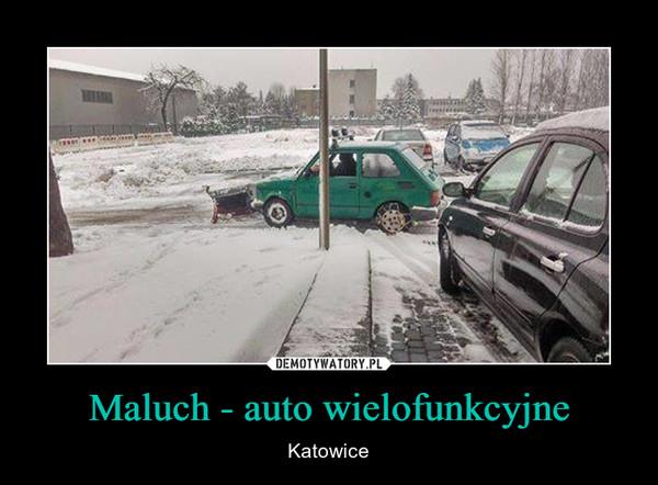 Maluch - auto wielofunkcyjne – Katowice