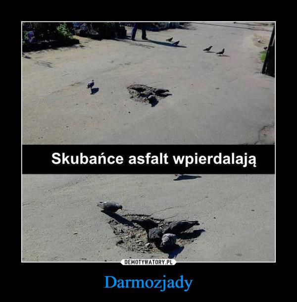 Darmozjady –  skubańce asfalt wpierdalają