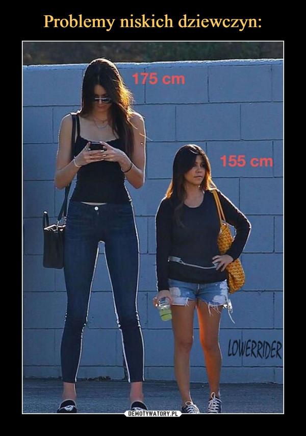 –  175 cm 155 cm
