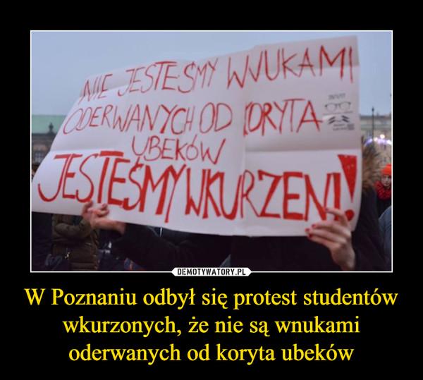 W Poznaniu odbył się protest studentów wkurzonych, że nie są wnukami oderwanych od koryta ubeków –
