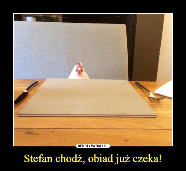 Stefan chodź, obiad już czeka! –