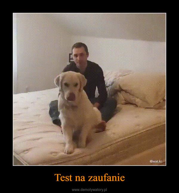 Test na zaufanie –
