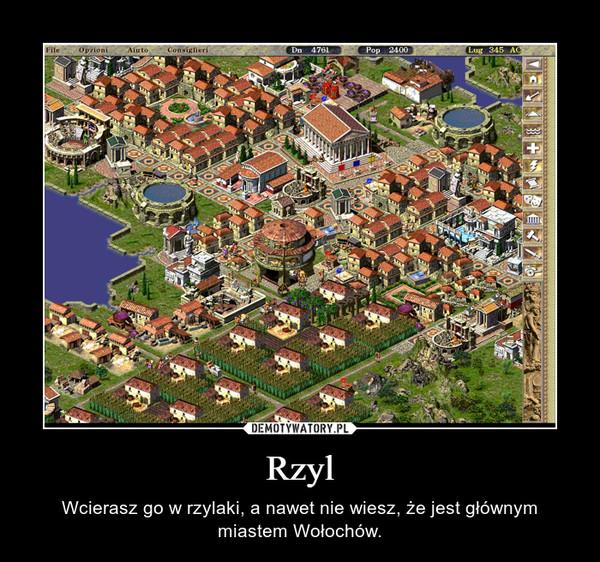 Rzyl – Wcierasz go w rzylaki, a nawet nie wiesz, że jest głównym miastem Wołochów.