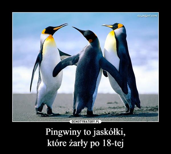Pingwiny to jaskółki,które żarły po 18-tej –