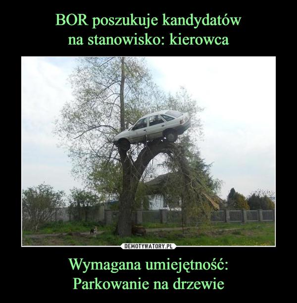 Wymagana umiejętność:Parkowanie na drzewie –