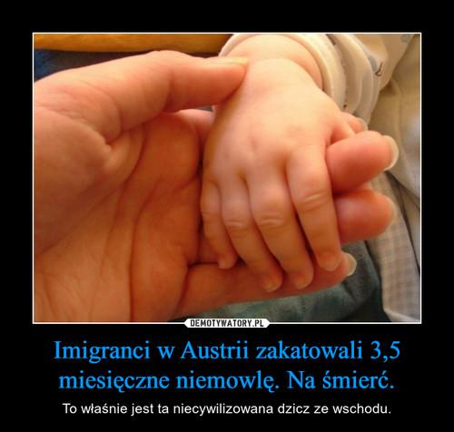 Imigranci w Austrii zakatowali 3,5 miesięczne niemowlę. Na śmierć.