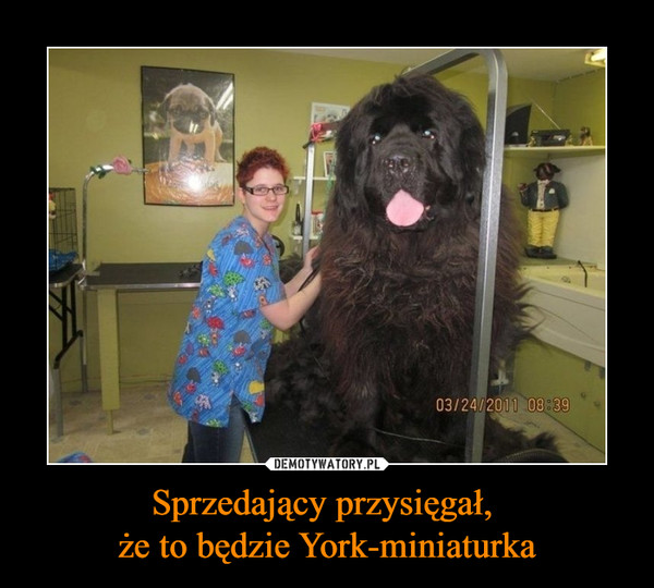 1490216699_akabak_600.jpg