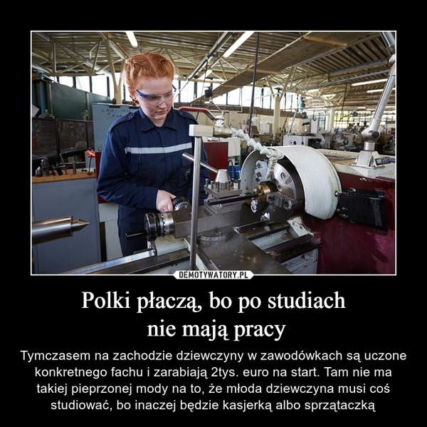 Polki płaczą, bo po studiach nie mają pracy – Tymczasem na zachodzie dziewczyny w zawodówkach są uczone konkretnego fachu i zarabiają 2tys. euro na start. Tam nie ma takiej pieprzonej mody na to, że młoda dziewczyna musi coś studiować, bo inaczej będzie kasjerką albo sprzątaczką