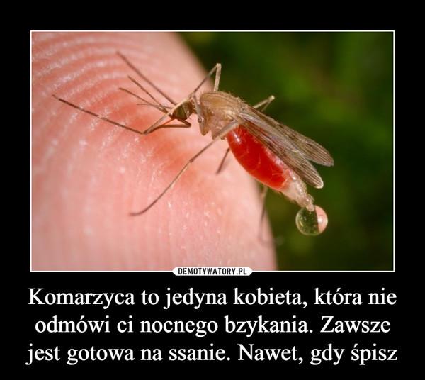 Komarzyca to jedyna kobieta, która nie odmówi ci nocnego bzykania. Zawsze jest gotowa na ssanie. Nawet, gdy śpisz –