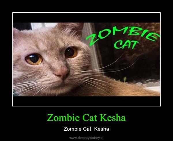 Zombie Cat Kesha – Zombie Cat  Kesha